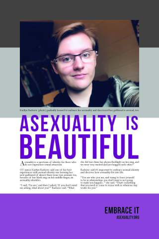 Asexuality Diversity Poster by Katie Valley
