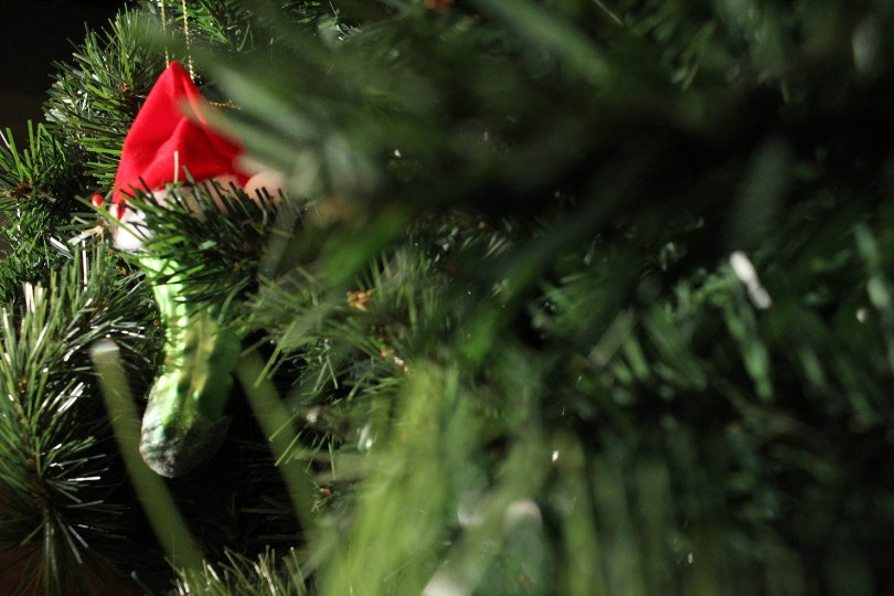 Close-up of pickle between tree branches, with red hat